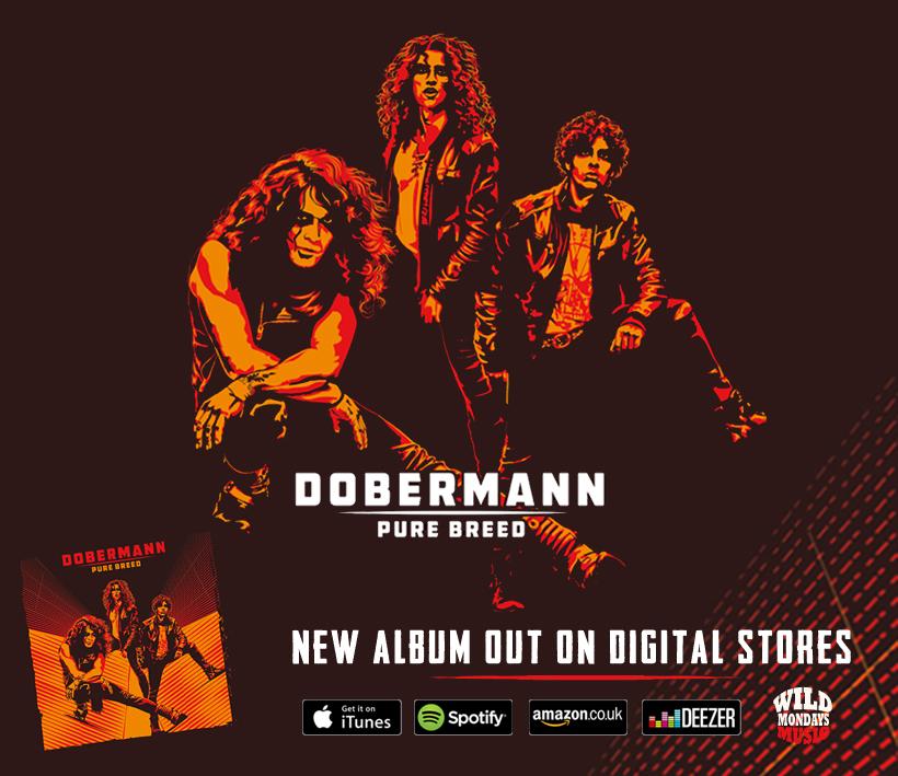 header_album_release_17